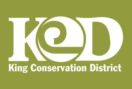 King CD logo - cropped