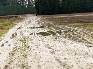 Mud 3.25.21