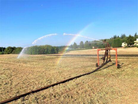 Irrigation Reel 6.30.21 min