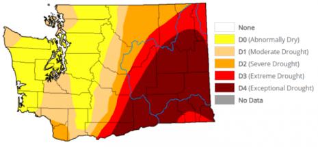 Washington Drought 072221 768x355 1