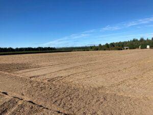 Fall seedbed prep 8.5.21