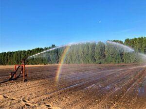 Irrigation Reel